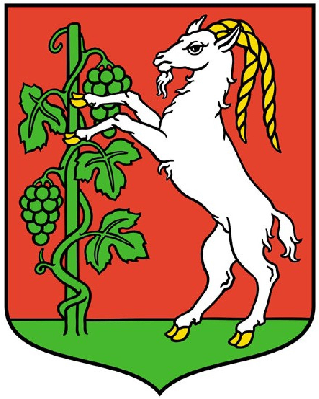 herb Miasta Lublin